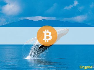 Third-Largest Whale Buys $170M Worth of BTC in Two Weeks